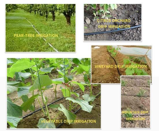 智能灌溉案例