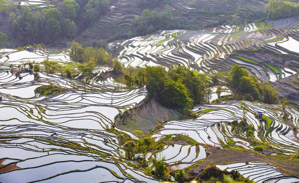 高效节水灌溉