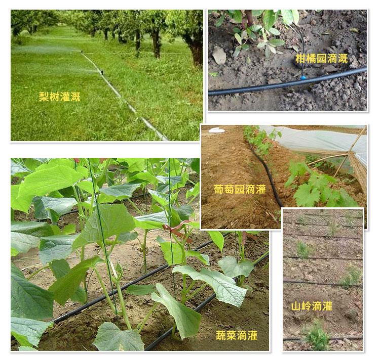节水灌溉案例