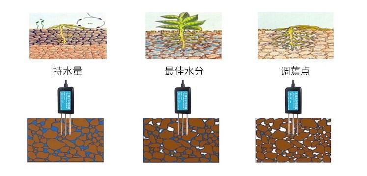 土壤传感器监测土壤水分
